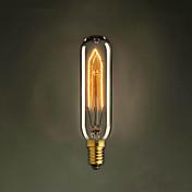 T10 E14の220V-240V 40ワットチューブ創造小さなネジエジソンの電球