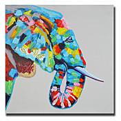 手描きの 動物 Modern / クラシック / トラディショナル / リアリズム / 地中海風 / 田園 / 欧風,1枚 キャンバス ハング塗装油絵