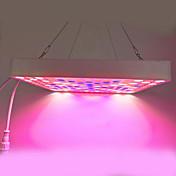 1PCS 225x2835smd 50ワット、青、ピンク、白、植物の成長ライトを導きました