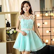 Signo primavera y el vestido de organza de verano vestido de primavera femenina de Corea damas delgadas falda de encaje