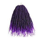 Rizado Las trenzas rizadas Extensiones de cabello Las trenzas de pelo