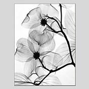 Ručně malované Květinový/Botanický motiv Vertikální Panoramic,Moderní Klasický Jeden panel Plátno Hang-malované olejomalba For Home