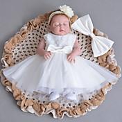 Vestido BebéEncaje-Algodón Tul-Invierno Otoño-