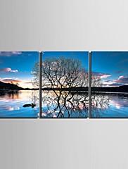 plátno Set Krajina Květinový/Botanický motivTři panely Vertikálně Tisk Art Wall Decor For Home dekorace