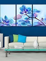 e-HOME® plátně Art Blue květinová výzdoba malířské sadu 3