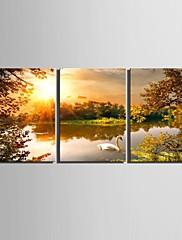 plátno Set Krajina Tradiční Klasický,Tři panely Vertikálně Tisk Art Wall Decor For Home dekorace