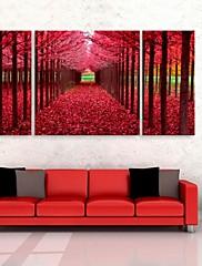 e-HOME® plátně umění červené dřevo dekorativní malby sadu 3