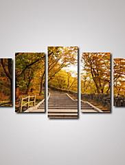 plátno Set Krajina Klasický Moderní,Pět panelů Horizontálně Tisk Art Wall Decor For Home dekorace