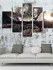 Kunst Print Blomstret/Botanisk Moderne,Fem Paneler Horisontal Print Vægdekor For Hjem Dekoration