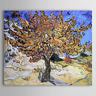 Aceite de la pintura famosa la morera de Van Gogh