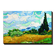 Wheatfield with Cypresses, c.1889 by Vincent Van Gogh Famous Stretched Canvas Print