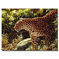 Printed Canvas Art Animal on The Prowl by Crista Forest with Stretched Frame
