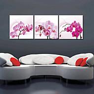 Reproduction transférée sur toile Art Floral Orchid Ensemble de 3