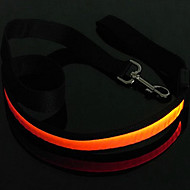 Dog Leash LED Lights Red / White / Green / Blue / Pink / Yellow / Orange / Rainbow Nylon