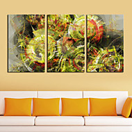 Stretched Canvas Print Art Abstract Cactus Set of 3