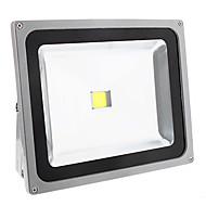 Valonheittimet - Viileä valkoinen 50.0 W