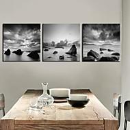 Stretched Canvas Art Landskap Svartvit utsikt Set om 3