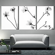 Toiles d'art The Quiet Fleurs Lot de 3