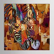 peinture à l'huile peinte à la main des animaux 2 zèbres abstraites avec cadre étiré