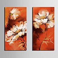 Stretched Canvas Art Dream Flowers Set of 2