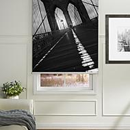 Перспективы ландшафт Бруклинский мост ролика тени