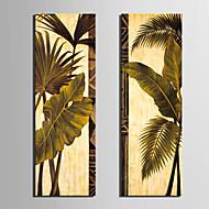 Reproducción en lienzo de arte botánico hojas verdes Set de 2