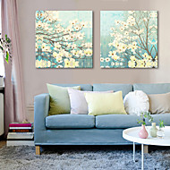 Stretched Canvas Art Floral Thriving Set of 2