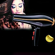 Fashion Professional Two Speed Settings Hair Dryer with Cool Shot Function (3000W)