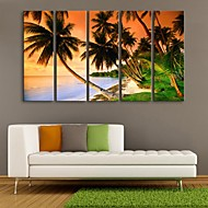 Personalized E-HOME® Canvas Print The Sea Coconut 24x70cm 30x90cm Framed Canvas Painting Set of 5
