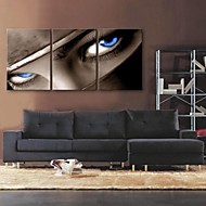 E-HOME® Stretched Canvas Art The Look in The Eyes Decoration Painting Set of 3
