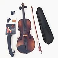 couleur restauration anciennes voies de la lumière muets de violon + chaînes + tuner + muette + résine + arc + boxa