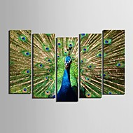 e-Home® sträckta canvas konst påfågel dekorativt måleri uppsättning av 5