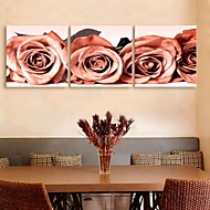 e-Home® allungato su tela decorazione di rosa set pittura di 3