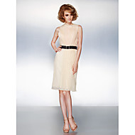 Dress - Plus Size / Petite Sheath/Column Jewel Knee-length Organza