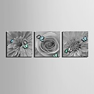 E-HOME® Stretched Canvas Art  Flowers And Butterflies Decoration Painting Set of 3