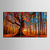 e-HOME lona envuelta arte de madera roja conjunto pintura decorativa de 5