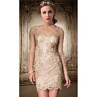 Cocktail Party Dress - Plus Size / Petite A-line Jewel Knee-length Lace
