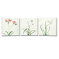 VISUAL STAR®Beautiful Flower Stretched Canvas Art Printing Ready to Hang