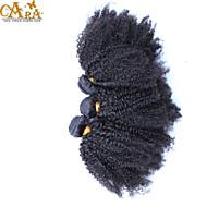 "3Pcs/Lot 10""-30"" CARA Mongolian Virgin Hair Color Natural Black Afro Kinky Curly Human Hair Weft Unprocessed"