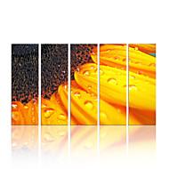 star®sunflower visual impresión de la lona de arte pared grande grupo estiró la pintura en la venta caliente
