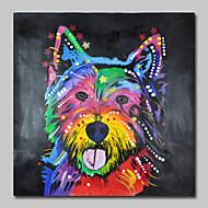 handgemaltes Ölgemälde auf Segeltuchwandkunst Pop Art netter Hund eine Platte fertig zum Aufhängen