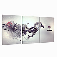 VISUAL STAR®Abstract Horse Stretched Canvas Printing Group Animal Canvas Art Ready to Hang