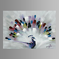Peacock Wall Art Canvas Print pronto para pendurar