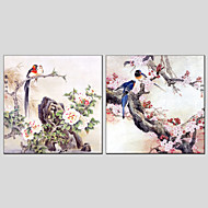 Oil Paintings Modern Flower And Bird Style Canvas Material With Wooden Stretcher Ready To Hang Size 70*70*2PCS