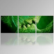 Abstraktní / Moderní / Romantické / Cestování / Volný čas / Slavné / Krajina / Botanický motiv Na plátně Tři panely Připraveno k Pověste ,