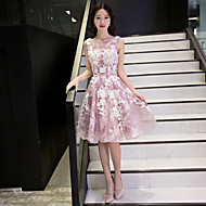 Cocktail Party Dress-Champagne / Candy Pink A-line Scoop Knee-length Lace / Tulle