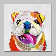 מצויר ביד מופשט / L ו-scape / בעלי חיים / Fantasy / נוף אבסטרקטמודרני פנל אחד בד ציור שמן צבוע-Hang For קישוט הבית