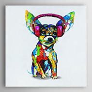 kézzel festett olajfestmény állat kutya fülhallgatóval feszített keret 7 fal arts®
