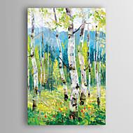 håndmalt oljemaleri landskapet lysegrønne trær med strukket ramme 7 veggen arts®