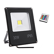 HRY® 30W RGB Color Light IP65 Led Flood Light Waterproof Outdoor Wall Lamp Projectors(85-265V)